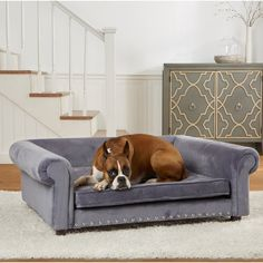 Pin By Bny Dogs On Dog Beds Dog Sofa Bed Dog Bed Dog