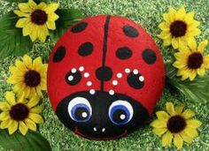 Painted rock - lady bug