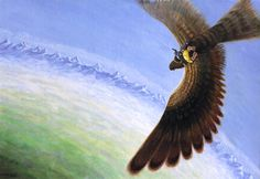 BILBO RIDES ON EAGLES WINGS BY GERD RENSHOFF AND RON PLOEG