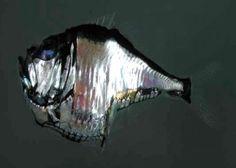 peixemachado