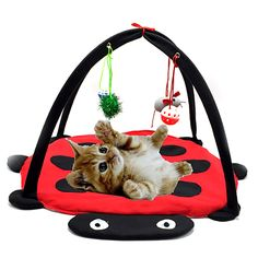 Gomaomi Pet Cat Toys Bed Mobile Activity Playing bed  Pad Blanket House