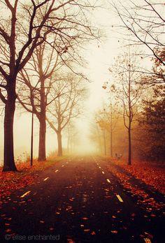 Hazy Autumn