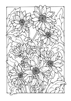 Malvorlage  Chrysanthemen