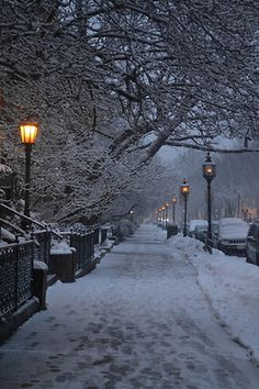 Christmas snow winter lights cold beautiful trees alone cars street silence city Magic evening new york silly-luv Winter Photography, Nature Photography, Christmas Aesthetic Wallpaper, Winter Light, Winter Snow, Winter Magic, Winter Scenery, Snow Scenes, Winter Pictures