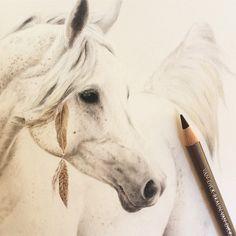 Working on one of my favourite subject matters for Element Eden. #elementeden #elementadvocat #horsedrawing #arabian #arabianhorse