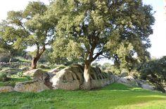 """Parco archeologico di S. Stefano - """"Altare"""" - Oschiri."""