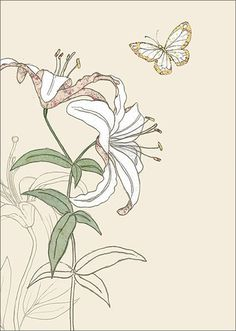 Iris and lily book three