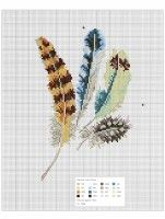 Gallery.ru / Фото #55 - Oiseauz, papillons et petites betes - Chispitas