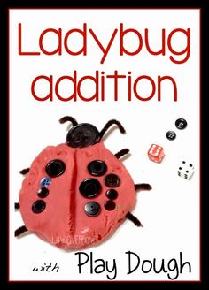 Bugs are insects - ladybug addition
