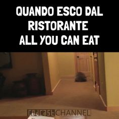 """I leave the restaurant """"all you can eat"""". Funny Love, Haha Funny, Lol, All You Can, How Are You Feeling, Funny Images, Funny Pictures, Verona, I Hate My Life"""