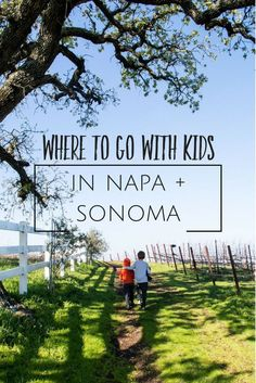 What to do with kids in Napa & Sonoma wine country