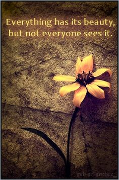 Learn to see the beauty in everything and everyone.