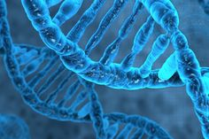 Human DNA Virus-Nearly of the human genome is virus DNA. Meaning some of our ancestors survived a virus but still carry the DNA it inserted. Human Embryo, Human Dna, Human Genome, Richard Feynman, Alzheimer's Treatment, Revolution, Dna Technology, Med Lab, Amber Fossils