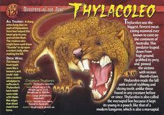 """This card has an error: on the front, in the """"When?"""" section, it lists the creature's pronunciation instead of time period. It is supposed to say Pleistocene. Prehistoric World, Prehistoric Creatures, Names Of Dinosaurs, Creepy Facts, Fun Facts, Interesting Animals, Extinct Animals, Wild Creatures, Creature Feature"""
