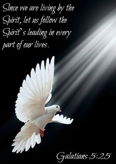Galatians 5:25 Since we are living by the Spirit, let us follow the Spirit's leading in every part of our lives.