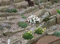 Alpine Garden   Google Search