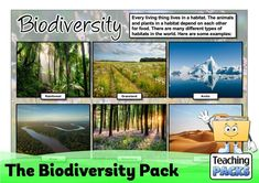 Learn about the amazing variety of life on Earth with our Biodiversity resources! This pack includes a topic guide (in PDF, Powerpoint and video formats), printable activities to try, and display resources to decorate your learning environment. Science Curriculum, Science Resources, Teacher Resources, Activities, Teaching Packs, Learning Environments, Geography, Habitats, Packing