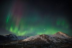 How to pick the best time and place to see the Aurora in Alaska. Quick vacation getaways for the Northern Lights. Northern Lights Viewing, Alaska Northern Lights, Northern Lights Tours, See The Northern Lights, Alaska Tours, Alaska Travel, Aurora Borealis, Alaska Vacation Packages, Northern Lights Forecast