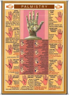 I always found palmistry very interesting.