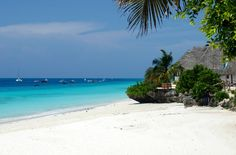 At one point in time, everyone has dreamed of visiting a white sandy beach. These seashores are idyllic to the beach culture to promote escapism from the daily We Bare Bears, White Sand Beach, Tanzania, World, Zanzibar Africa, Water, Outdoor, Oceans, Java
