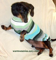 Green stripe dachshund sweater handmade cotton teckel dog jumper