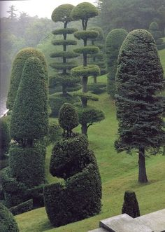 Topiary Hunnewell Estate, Wellesley, Massachusetts - Topiary in the Hunnewells' terraced Italian Garden. The tallest trees are native white pines, clipped once a year.