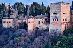 Alhambra, Spain Travel in Spain and learn the real Spanish with the Eurolingua Institute http://www.eurolingua.com/spanish/spanish-homestays-in-spain