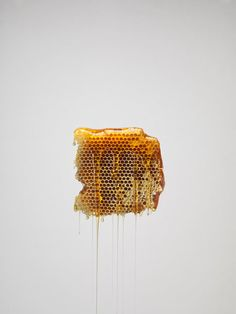 CEREAL Vol.V - Honey | Photo by Jonathan Gregson