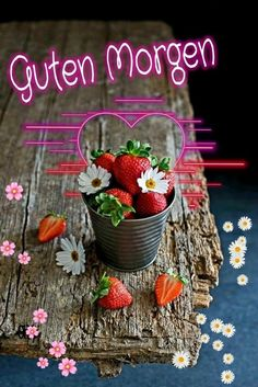 Good Morning Beautiful Gif, Good Morning Images, Good Morning Wishes, Good Morning Quotes, Morning Humor, Funny Morning, Jesus Pictures, Coffee Art, Beautiful Roses