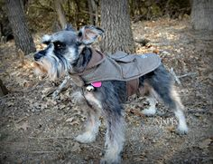 Dog Jacket Sherlock by Nannabells on Etsy