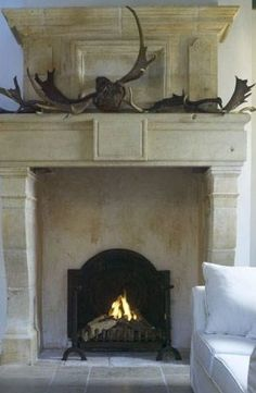 handsome & sculptural antlers