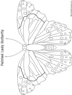 Painted lady butterfly diagram - photo#4