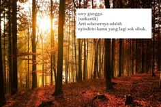 Sunset-forest-23785142-1024-681 Quotes Indonesia, Hilarious, Funny, Sarcasm, Qoutes, Poems, Country Roads, Inspirational Quotes, Lol