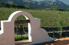 Vineyard of Yacochuya in Cafayate - Salta, Argentina