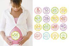 Bauchsticker für die Schwangerschaft
