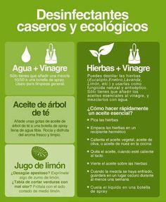 Desinfectantes caseros y ecológicos.