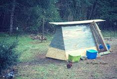 Do you have one of those old A-shaped swingsets rusting in your backyard? If you do, then you have the basis for an awesome swingset chicken coop! Raising Backyard Chickens, Backyard Poultry, Backyard Chicken Coops, Keeping Chickens, Diy Chicken Coop, Chicken Waterer, Beautiful Chickens, Urban Chickens, Farm Projects