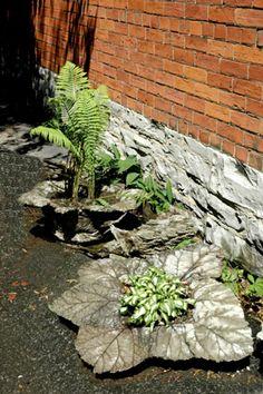 1000+ images about Concrete planters on Pinterest
