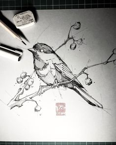 Bird sketch by psdelux illustration inspiration - pencil-drawings Bird Drawings, Animal Drawings, Pencil Drawings, Drawing Birds, Bird Pencil Drawing, Pencil Art, Animal Sketches, Drawing Sketches, Sketches Of Birds