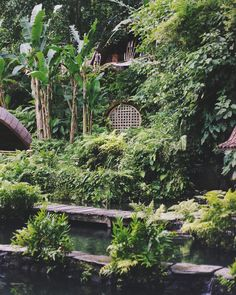 A Comprehensive Guide on How to Pull Off a Garden Makeover - Decorology
