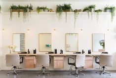 Frank & Faber | Aer Blow-dry Bar. Millennial Pink and hanging plant wall commercial design ideas and inspiration for interior decor, natural wood, taupe and brass