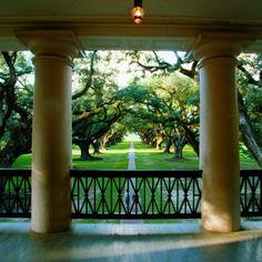 balcony view at the Oak Alley Plantation in Vacherie, Louisiana Southern Plantation Homes, Southern Mansions, Plantation Houses, Southern Homes, New Orleans Plantations, Southern Plantations, Southern Architecture, Revival Architecture, Gardens