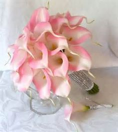 Light pink Calla Lily Bouquets for the bridesmaids... stem wrapped with aqua ribbon and bling...BEAUTIFUL!!