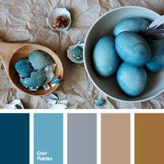 black and blue colors, black and brown colors, brown and black colors, color of cinnamon, color of cinnamon stick, color of granite, color of ochre, contrasting combination of warm and cool tones