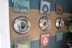 Dog dishes turned into mirrors - wall art for the dog room?