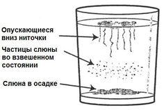 огулов чистка от паразитов