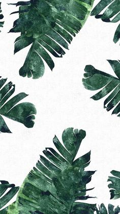 'Banana Leaf Pattern iPhone Case by Tropical leaves iPhone wallpaper Cool Wallpapers Iphone X, Iphone Wallpaper Tropical, Leaves Wallpaper Iphone, Wallpapers Wallpapers, Palm Leaf Wallpaper, Plant Wallpaper, Aesthetic Iphone Wallpaper, Wallpaper Backgrounds, Aesthetic Wallpapers