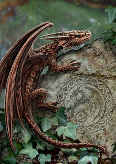 "Baby Hungarian Horntail...""I don't envy the one who gets the Horntail. Vicious thing. Its back end's as dangerous as its front.""       —Charlie Weasley"