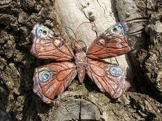Фотография Moth, Insects, Photo Wall, Photograph