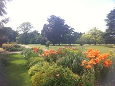 Exbury Gardens, one of the stops on the New Forest Tour and a great place to spend a few hours... and don't miss the steam train ride that runs through a kids sculptor park, wonderful!